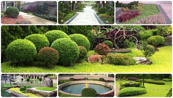 植物配景与造景_庭園造景規劃、綠牆施工|亞森產業有限公司庭園設計、景觀造